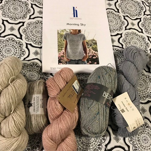 My next project but I have to decide what yarn to use!!