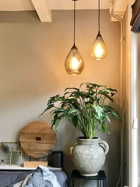 Pot met plant ornament glazen hanglampen