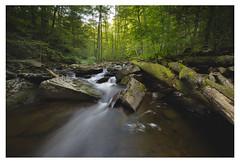 Ricketts Glen State Park 97848