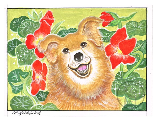 Smiling dog with Nasturtium