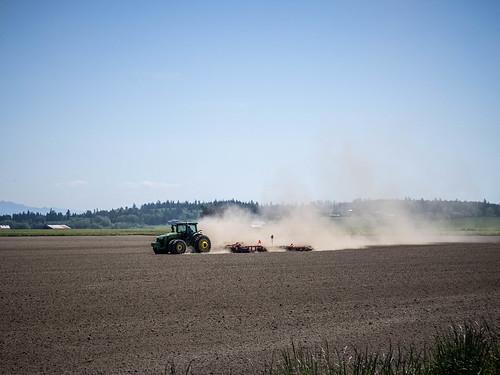 Dusty Skagit Farms-001