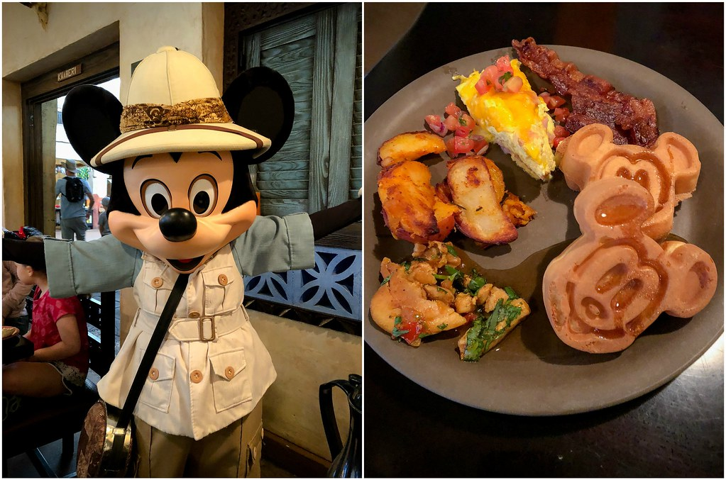 mickey and mickey waffles