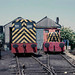 Queenborough Rolling Mill loco shed. 30/06/86.