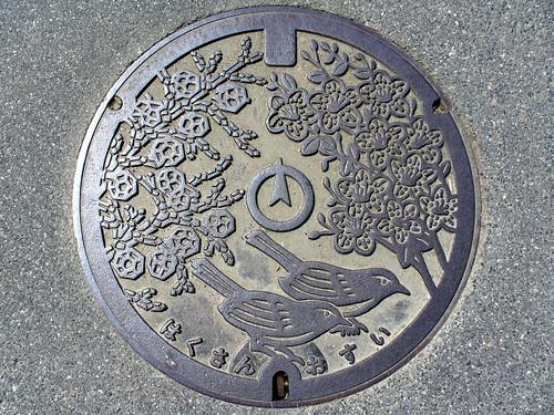 Hakusan Mie, manhole cover (三重県白山町のマンホール)