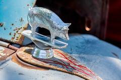 1935 Ford Pickup hood ornament - Downtown Visalia car show
