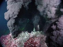Hydrothermalvent