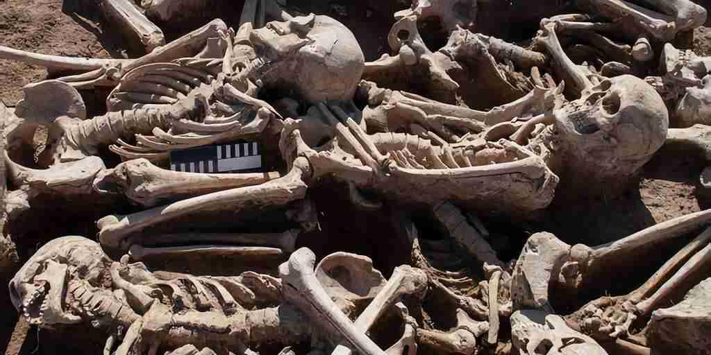 Un virus du foie est peut-être avec nous depuis l'aube de la civilisation