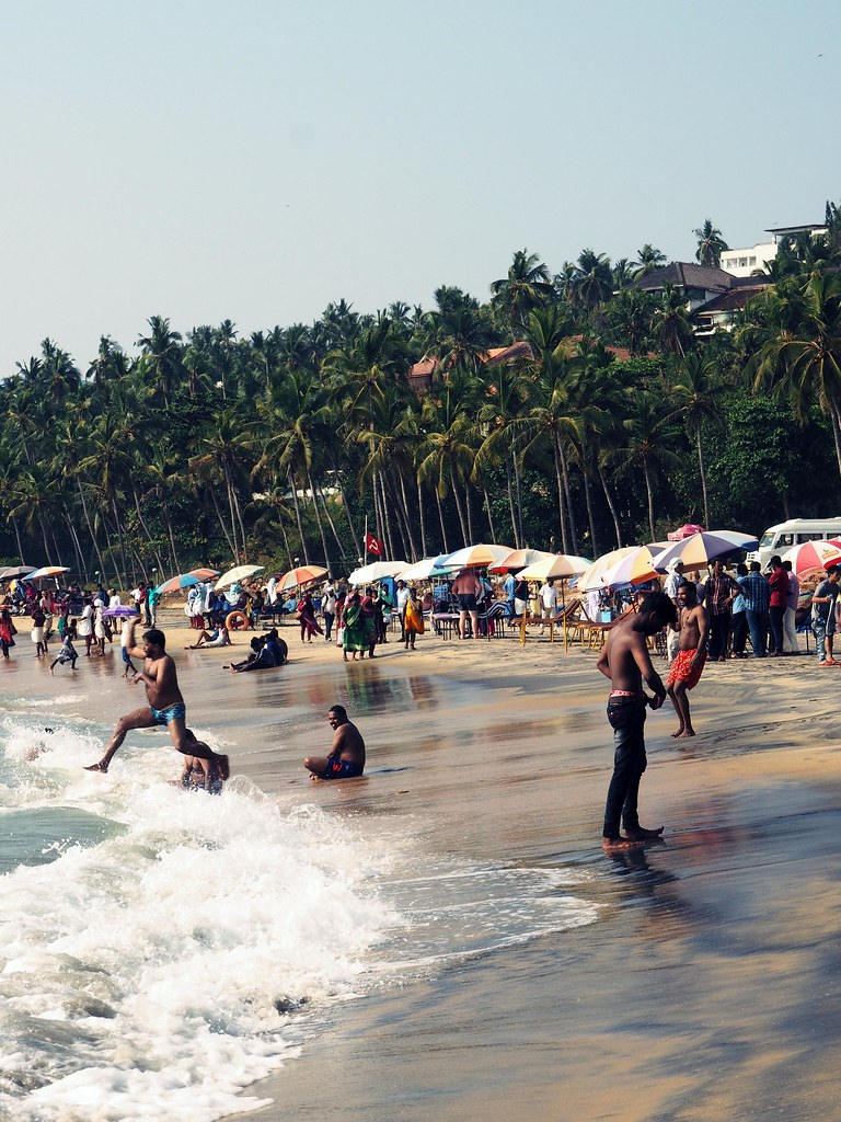 kovalam beach palmtrees shores travel diaries kerela_effected
