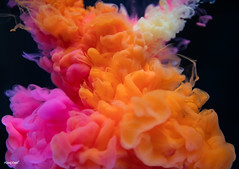 Abstract orange and pink color drop to the water