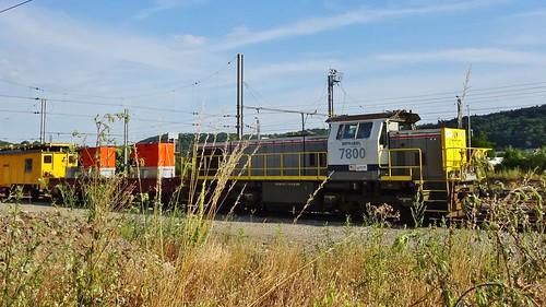 HLR 7800 - L125 - STATTE