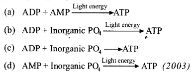 neet-aipmt-biology-chapter-wise-solutions Photosynthesis in Higher Plants - 33