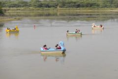 Swan boats #travel #india #punjab #chandigarh #street