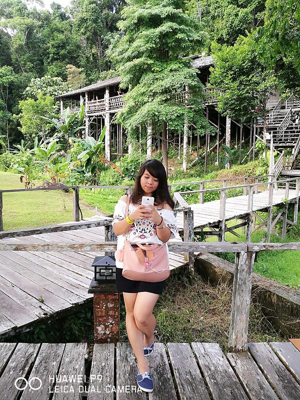 Rainforest World Music Festival 07