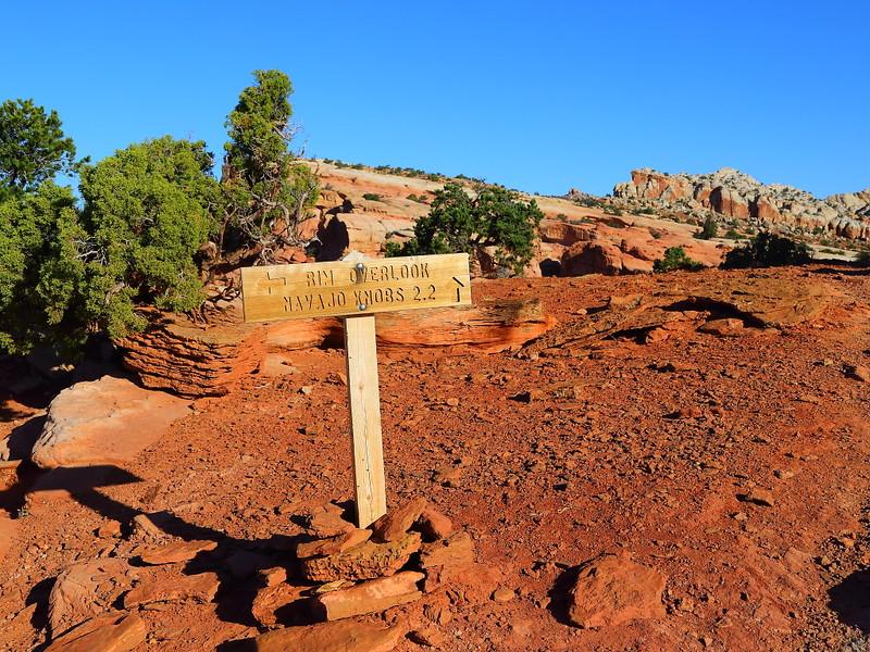 IMG_4545 Rim Overlook Trail
