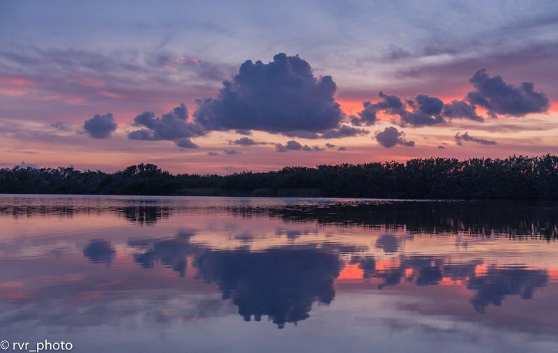 Everglades NP - Paurotis Pond
