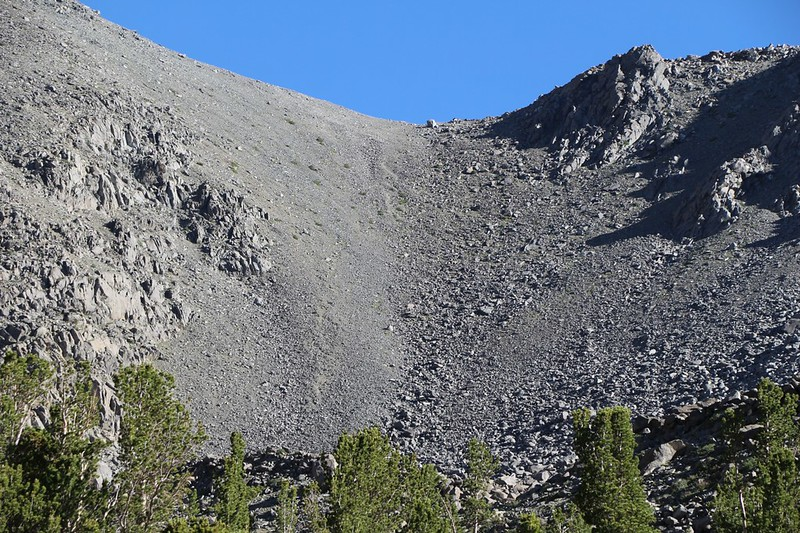 View of the scree and talus below the saddle on the east ridge of Cloudripper - we would stay on the big rocks