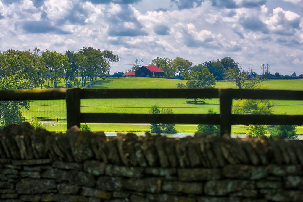 A Woodford County Farm