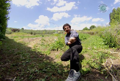 L'orto sinergico di Capena / The synergic vegetable garden of Capena
