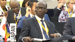 Busan AfDB Annual Meetings - Governor for Chad