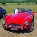 Ormesby Hall Classic Car Show (6)