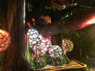 Photo 5 of 10 in the Chessington World of Adventures gallery