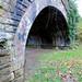 Disused railway arch