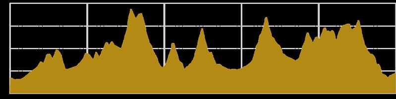 perfil-completo-pedales-de-las-minas