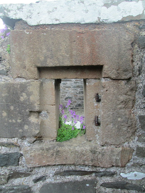 Glenluce Abbey window