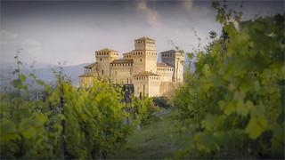 _DSC7160 Torrechiara - Emilia-Romagna / Italia
