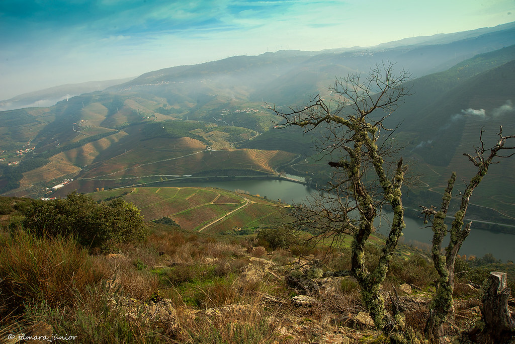 17.- 2015 - Outono no Douro Vinhateiro IIII (309)