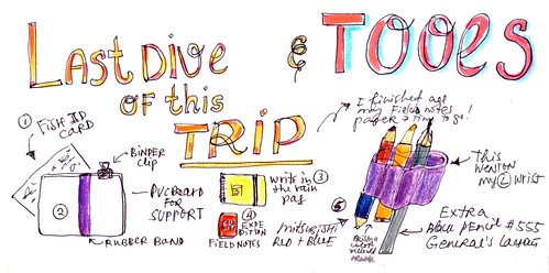 Sketchbook #113: Trip to Bonaire -  Underwater Sketching Tools / Scuba Diving and Drawing