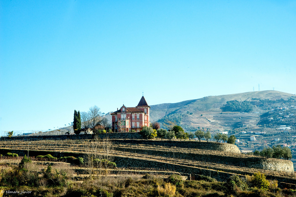 2017.- Pelo Douro no outono II (147)