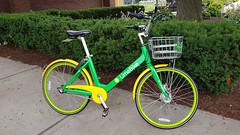 Hyde Playground Lime Bike