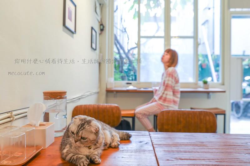 咖啡館︱喝咖啡,咖啡館有店貓,咖啡館餐廳有貓咪,貓咪咖啡館,貓咪坐檯當店長 @陳小可的吃喝玩樂