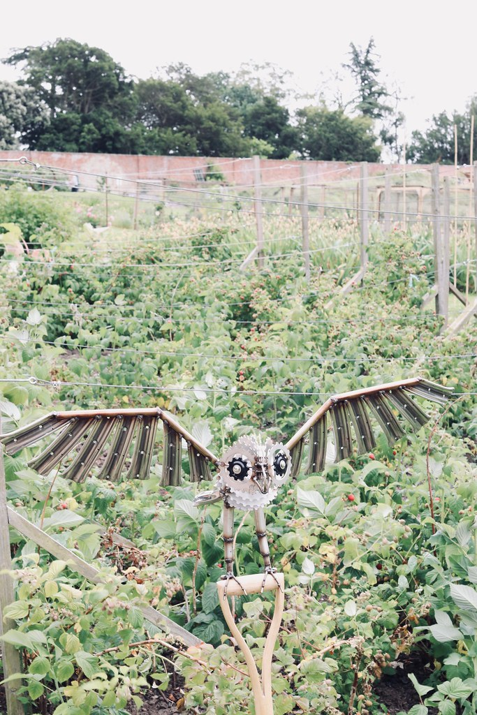 croome,croome court, the walled gardens at croome, things to do in worcestershire, owl, owl sculpture, vegetable garden, walled gardens uk, katelouiseblog