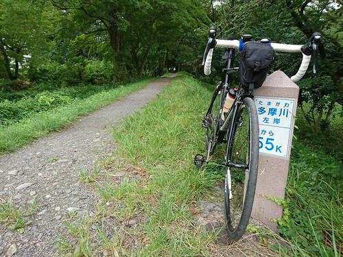 多摩川CR 100kmライド