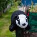 Scotland's Gardens Craigintinney Telferton July 2018 -86