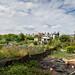 Scotland's Gardens Craigintinney Telferton July 2018 -178