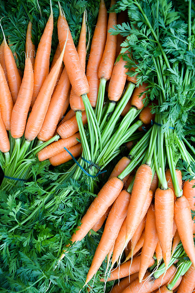 Carrots at Sarlat Market, South West France #carrots #sarlat #market #farmersmarket #france #dordogne