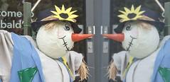 Scarecrow Reflection.