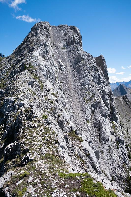 Scrambles - Heart Mountain, Grant MacEwan, Twin Towers July 2018-10