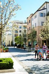 Весенняя улица в Порто Монтенегро