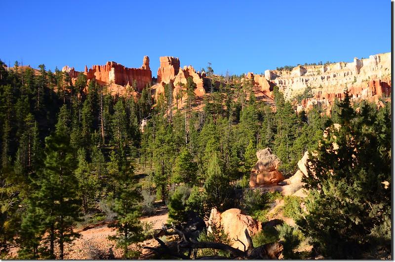Queens Navajo Combination Loop,Bryce Canyon (10)