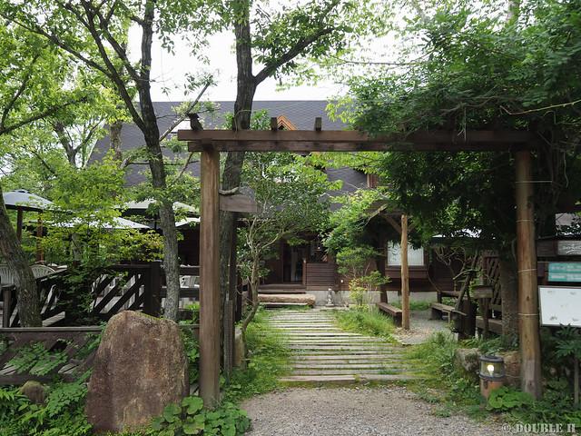 Terrace Cafe Tree House 2018-07-13 (3)