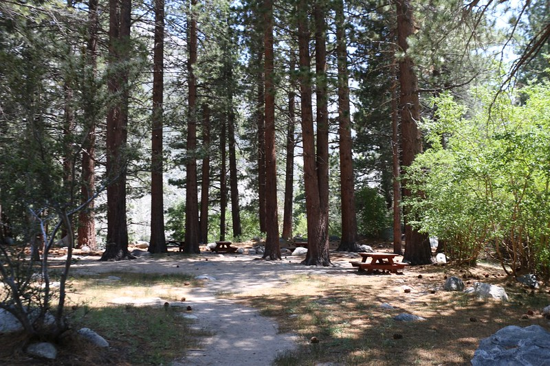 The old USFS Walk-In Campground at the top of First Falls at North Fork Big Pine Creek