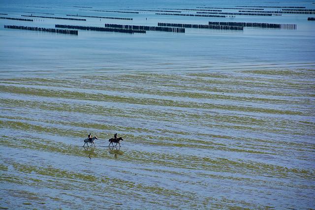 cavaliers sur la plage Bretagne _2581