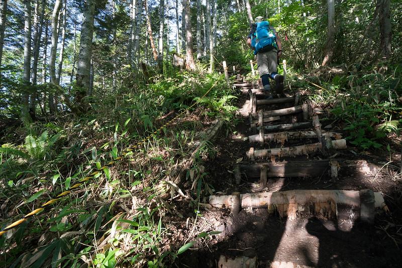 田代山登山道 階段