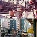 元朗青山公路近鳳翔路1982年