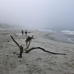 People on the beach/Carmel Beach