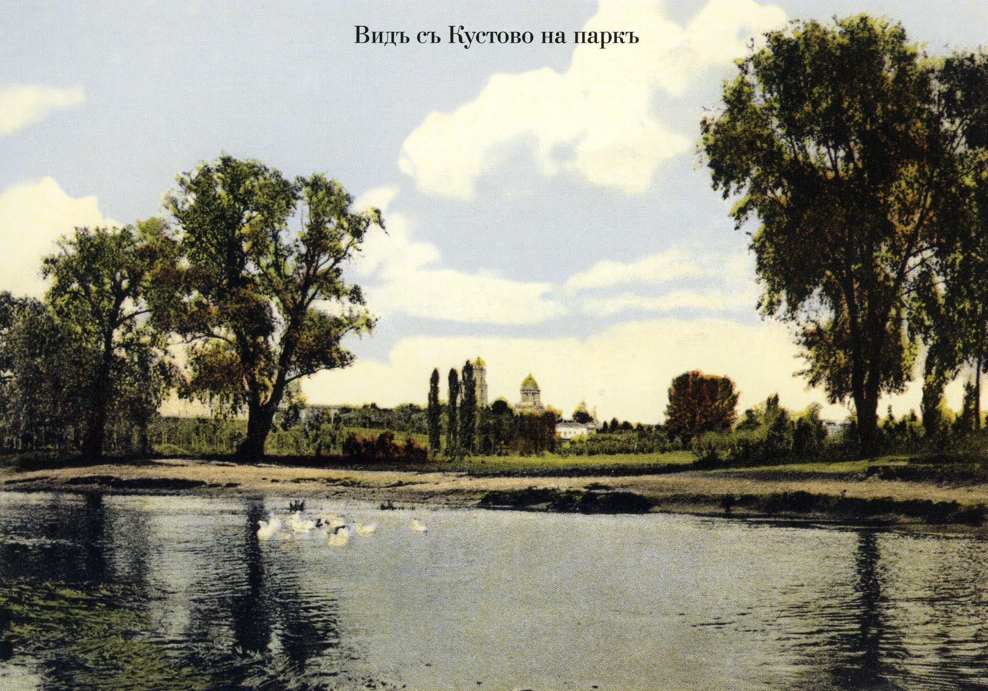 Вид с Кустово на парк